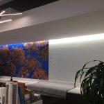 Custom Vinyl Wall Murals IMG 4730 150x150